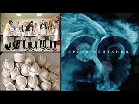 Теория заговора Стоматологи (15.03.2015)