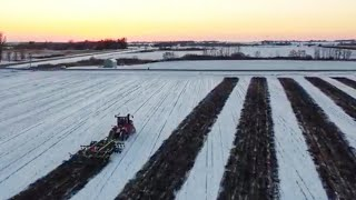 Tillage in the Snow!
