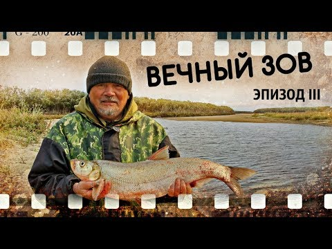 Рыбалка Видео о рыбалке на реке Амур (ВЕЧНЫЙ ЗОВ - III) - YouTube