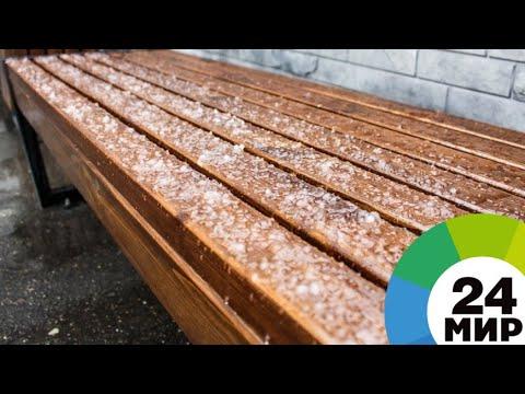 «Обыкновенная ленинградская погода»: в Петербурге выпал майский снег - МИР 24
