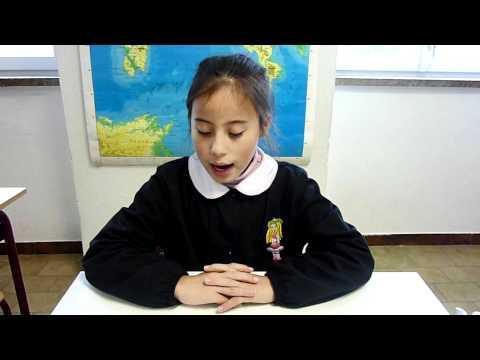 TV-Casteldelpiano, Videogiornale dell'11 novembre 2010: I FUNGHI DELL'AMIATA