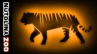 Tijger geluid / Rugissement tigre / Cri du tigre / Tijger brul