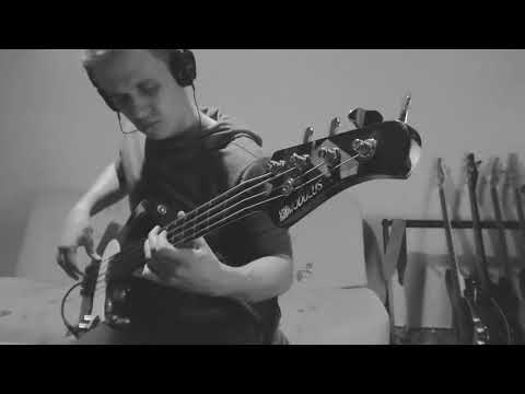 Red Hot Chili Peppers - Sick Love - bass cover