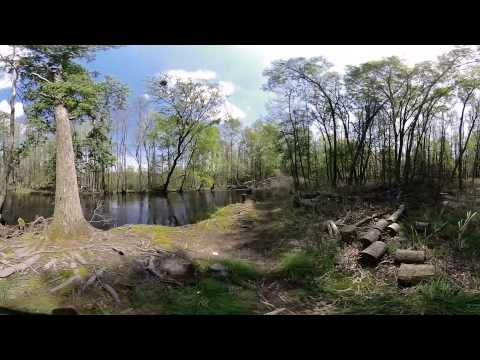 3D-360° Lumber River State Park
