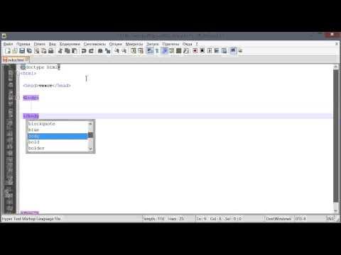 Служебная информация и содержимое веб-страницы (Основы HTML и CSS)