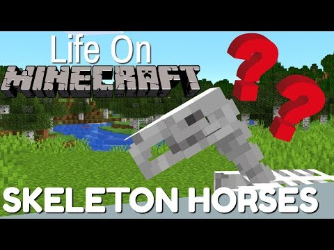 Minecraft: All About The Skeleton Horse | Life On Minecraft (Avomance 2019)