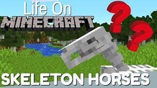 Minecraft: All About tнe Skeleton Horse   Life on Minecraft (Avomance 2019)
