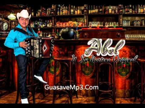 ABEL Y SU NORTEÑO ORIGINAL - Ella Es Morena (En Vivo 2015) GuasaveMp3