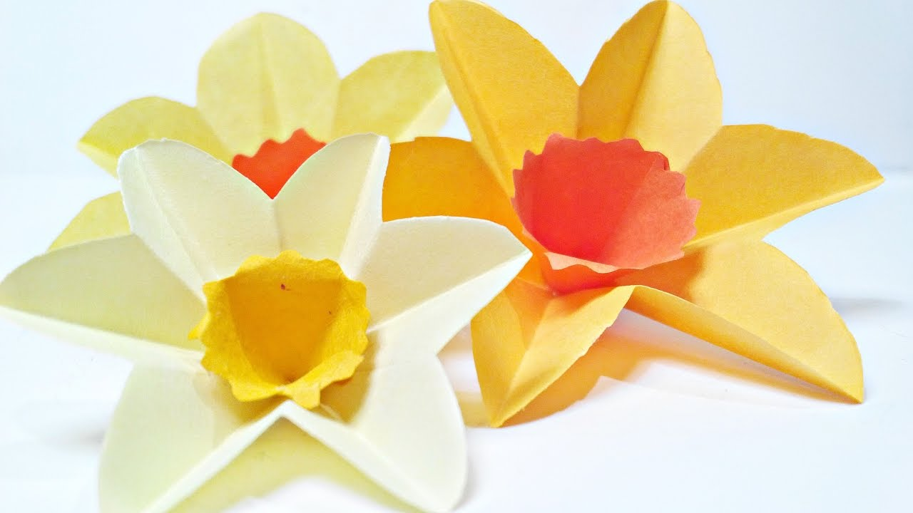 Daffodils Narcissus paper flower for wall decoration arts and crafts     Daffodils Narcissus paper flower for wall decoration arts and crafts paper  flowers easy for kids