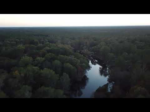 Ogeechee River in Bulloch County GA