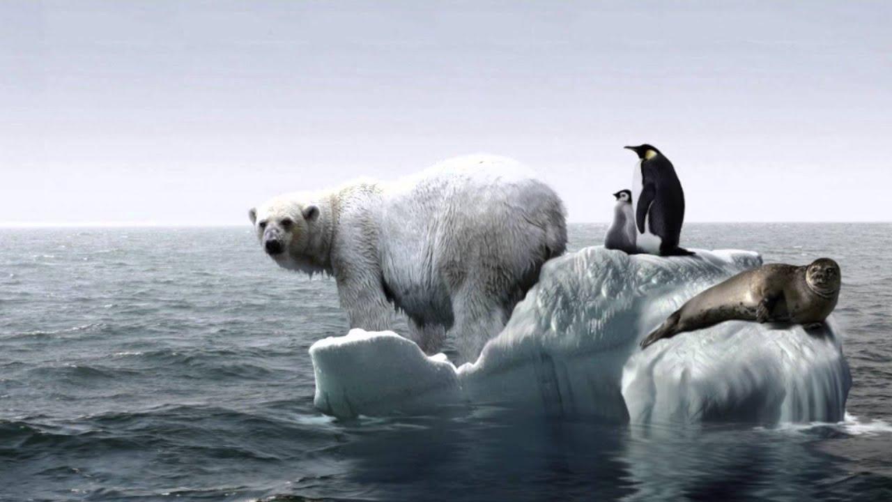 Global opvarmning