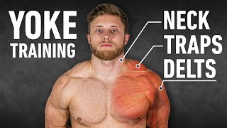 How To Get Yoked: The Best Trap, Neck and Delt Workout (Science-Based)