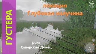 Русская рыбалка 4 река Северский Донец Густера у глубокой ямы