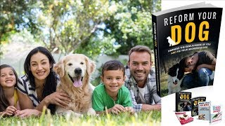 Reform Your Dog Review does it Really work?