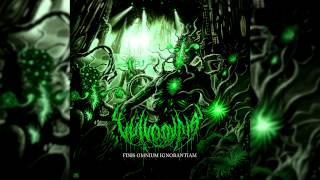 Vulvodynia - Finis Omnium Ignorantiam (Full Instrumental Album) NEW 2015