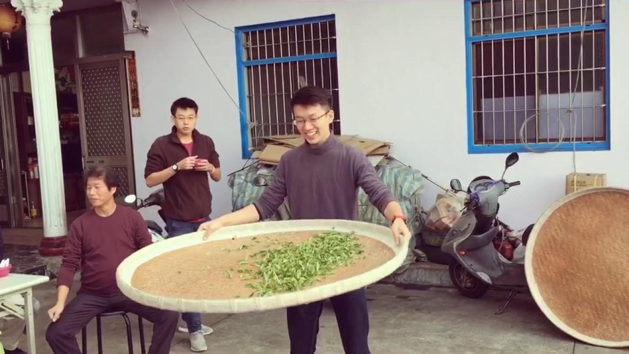 茶鄉深度體驗之旅-幸福台灣旅行