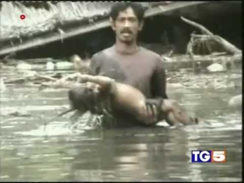 26/12/2004 Tsunami hit Asia and Indonesia