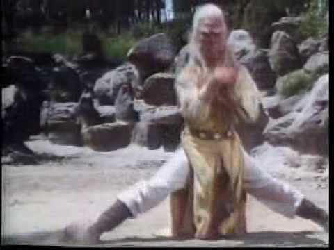 Download kung fu seven steps of kung fu