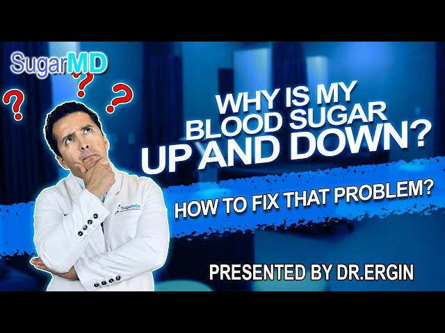 WHY is my blood sugar UP AND DOWN? Stop the Madness! SugarMD