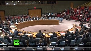Против санкций: Россия и Китай наложили вето на резолюцию ООН по Сирии