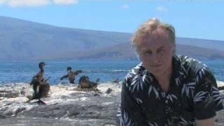 Richard Dawkins: Vestigial Organs: The Wings of the Flightless Cormorant