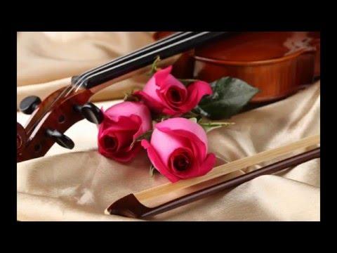 ILAM MANJIN..Violin cover