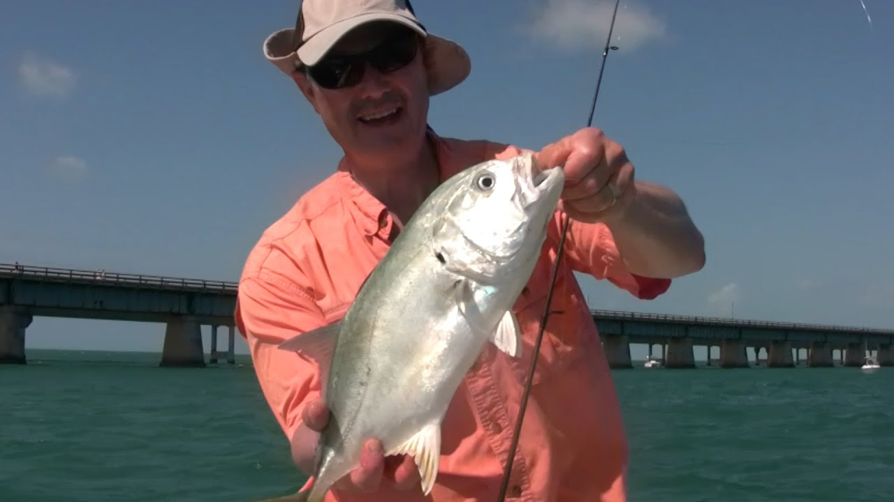 Jack crevalle and black grouper fishing in the florida for Grouper fishing florida