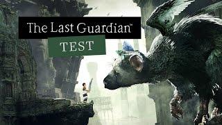 THE LAST GUARDIAN im TEST | Freundschaft mit Hindernissen