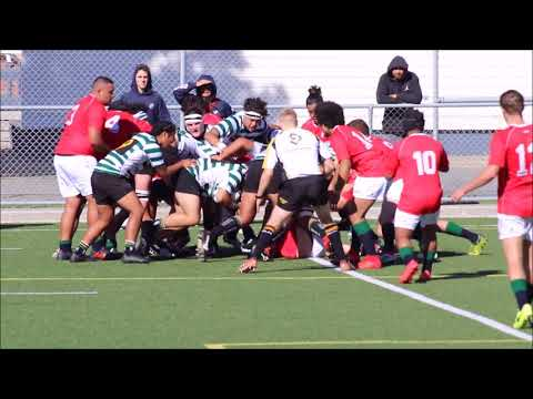 Club Rugby Tries of the Week for 20 and 21 April