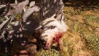 Far Cry Primal On GTX 660 TI {freeroaming #1 - Ultra Test}