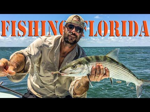 Fishing Tarpon And Bonefish In Key Biscayne Florida