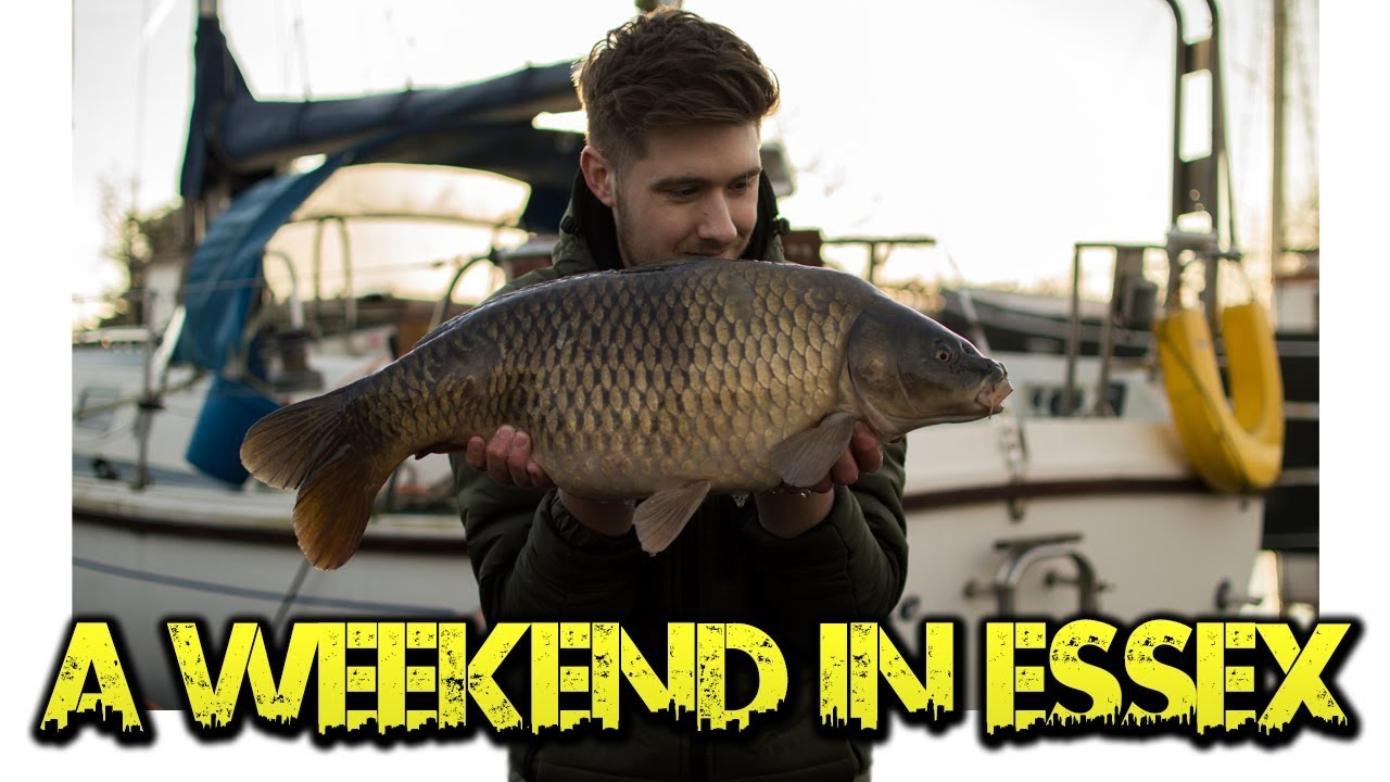 CARP FISHING: A Weekend in Essex