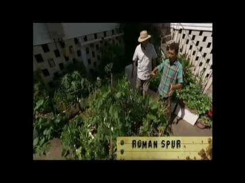 Gardening Australia Season 28 Episode 7 April 14 2017