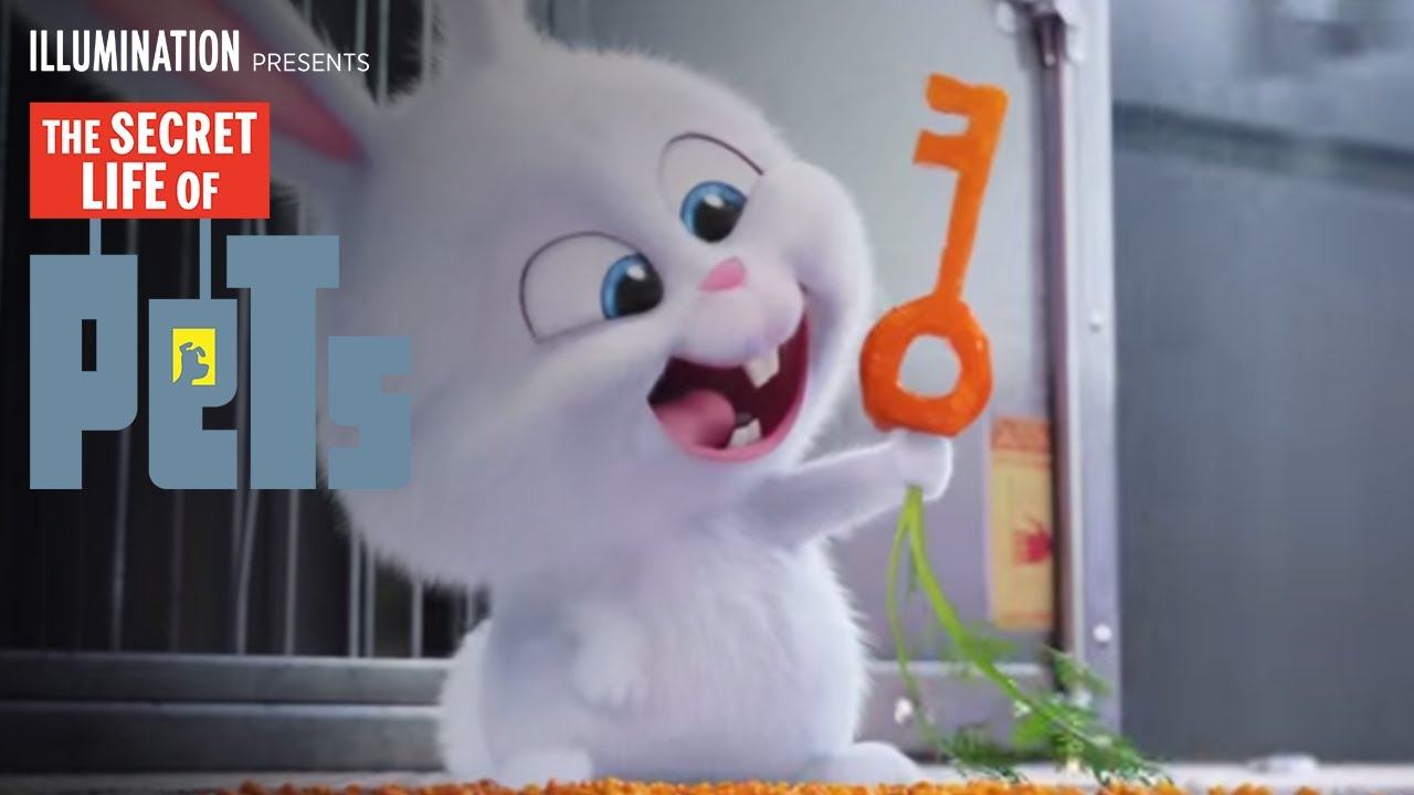 The Secret Life of Pets - Kevin Hart Is Snowball (HD) - Illumination