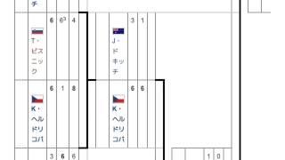 「2000年全仏オープン女子シングルス」とは ウィキ動画
