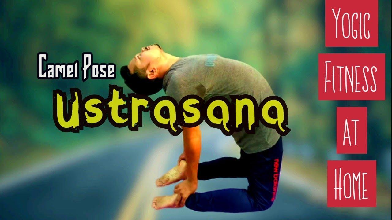 Ustrasana In Bengali
