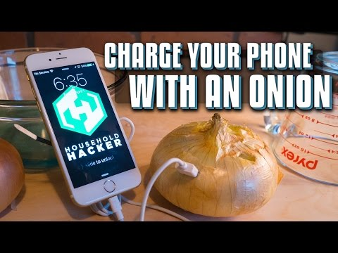 How To Charge Your Phone with An Onion and Electrolytes