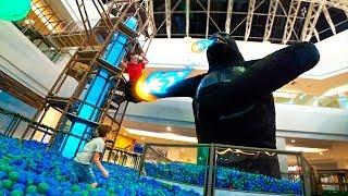 Paulinho Salva o Toquinho do Gorila Gigante da Piscina de Bolinhas