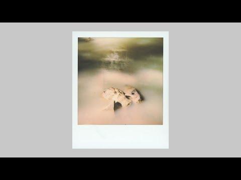 Polaroid Originals SX-70 Film Review