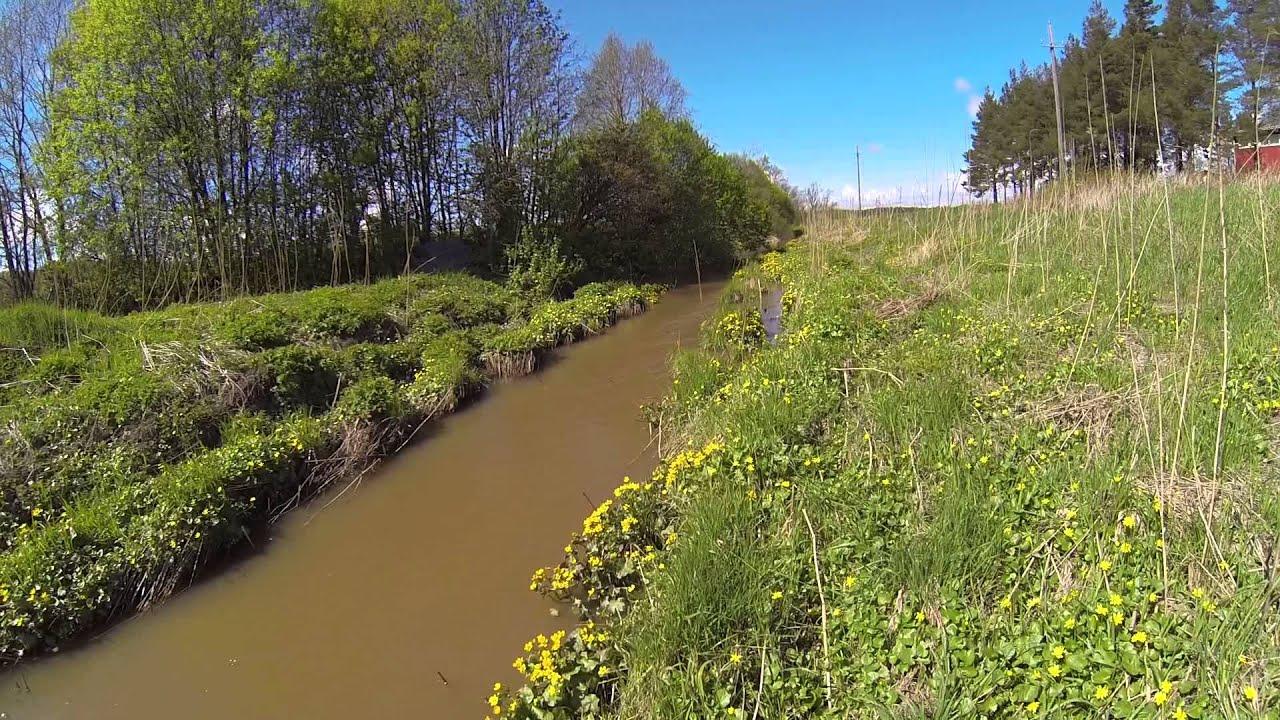 Keltainenjoki
