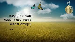 ספירת העומר בירושלים- ירושמימה- מישיבת הכותל רואים את ירושלים של מעלה- הרב גדי שלוין