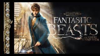 Trailer Fantastic Beasts 2016 Трейлер Фантастические твари, партия флейты - Копытцева Елизавета