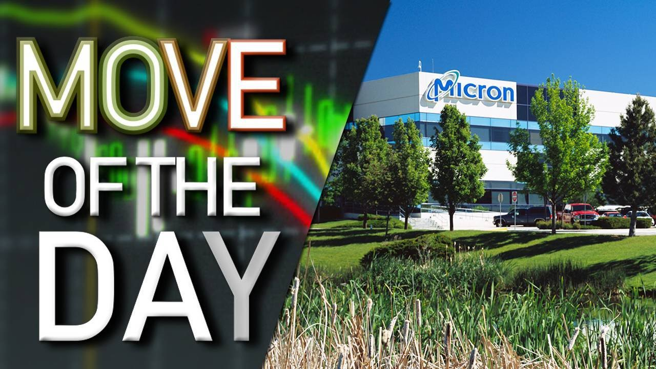 Shares of Micron Technology Lead S&P 500, Rise Amid Possible Merger With  Chinese Tech Company