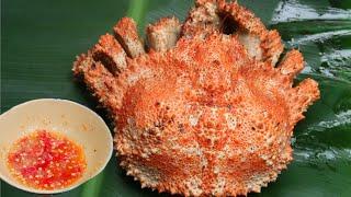 Lần Đầu Ăn Cua Lạ - CUA RUBY ALASKA Khổng Lồ Hấp Nước Dừa (RUBY CRAB) - Miền Tây Vlogs Tập 356