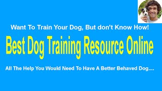 How To Teach Your Dog To Sit - How To Teach Your Dog Sit, Down, Up And Stand In Minutes!