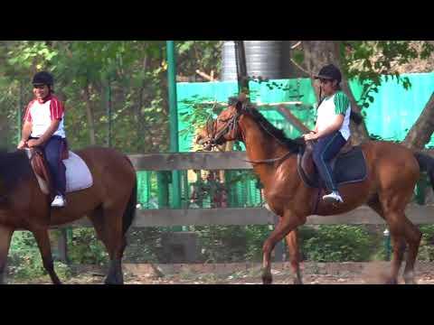 Saupin's School Chandigarh Horse Riding Club