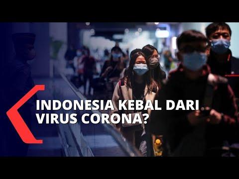 Indonesia Kebal Infeksi Virus Corona?