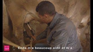 Témoignage Hosni Jbeli - Eleveur de bétail