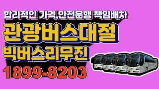 합리적인가격 관광버스대절전문업체 빅버스리무진 【빅버스B…