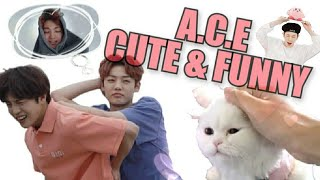 A.C.E CUTE \u0026 FUNNY MOMENTS #37